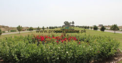 REQUIRED PLOT IN CBR PHASE 2 .