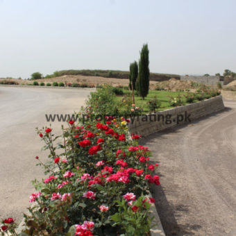 REQUIRED PLOT IN CBR PHASE 2 . All Block Plots